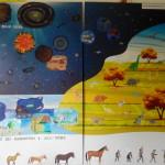 Immagine del cartellone con le tappe dell'evoluzione